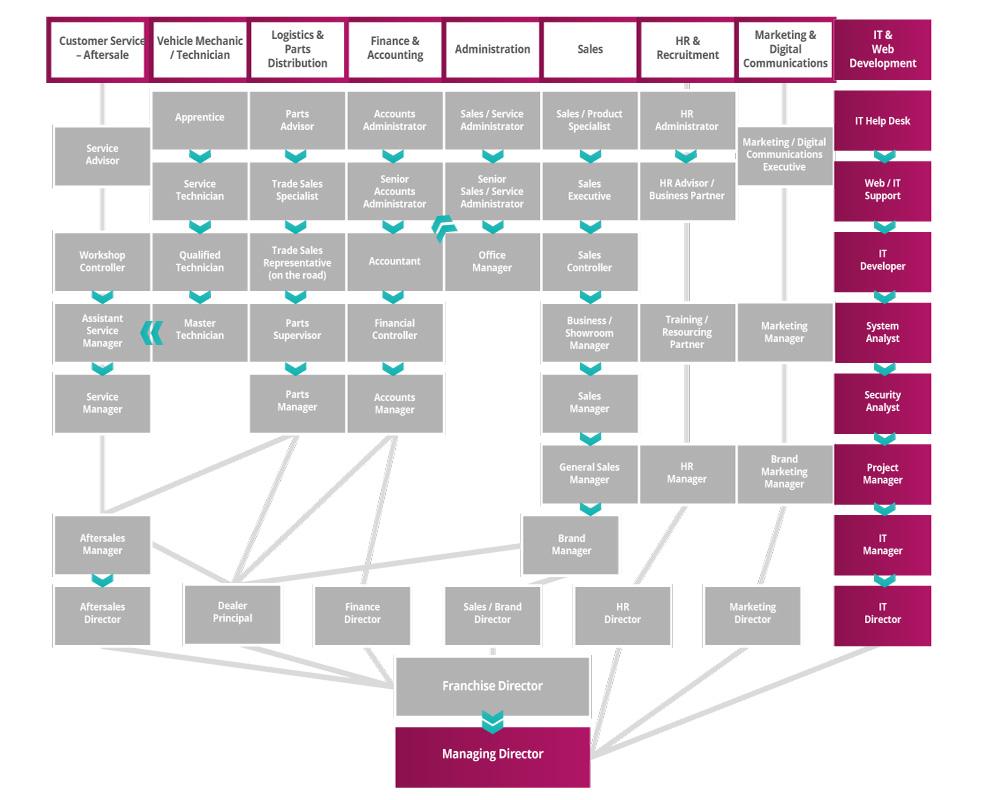 IT & Web Development Roadmap